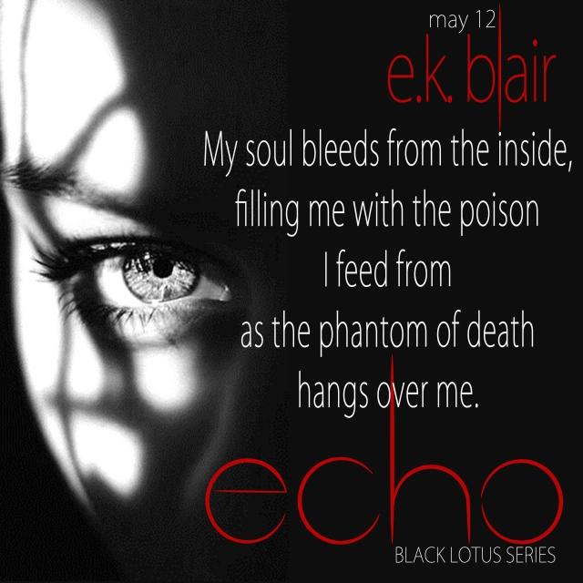 Echo Teaser C