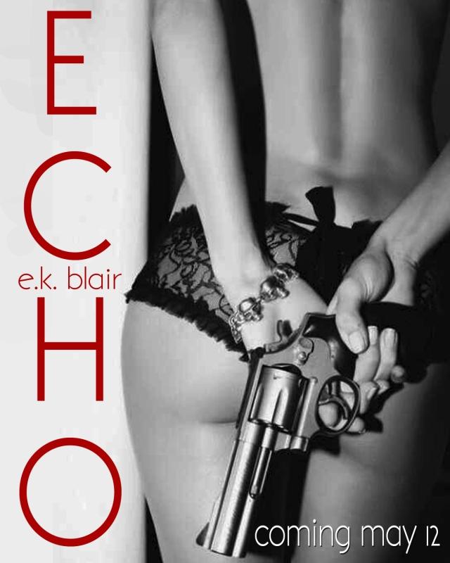 Echo Teaser D